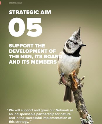 Strategic Aim 5