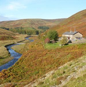 Wales biodiversity strategy