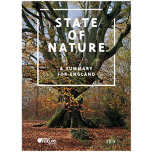 Download the State of Nature 2019 - A Summary for England