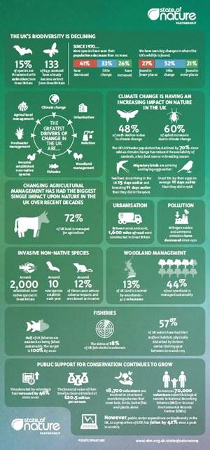 UK Infographic shown for illustrative purposes