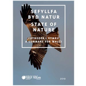 Download the State of Nature 2019 - A Summary for Wales (in English and Welsh)