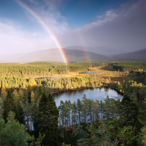 Cairngorms c. Cairngorms National Park Authority